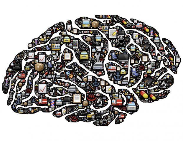 Brain image by John Hain from Pixabay